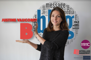 b-de-blog-quelmastermarketing-choisir-montpellier-moma-master-marketing-et-vente-mention-communication-media