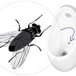 quelq-mastermarketing-blog-actualite-article-challenge-paris-2024-illustration-mouche-urinoir