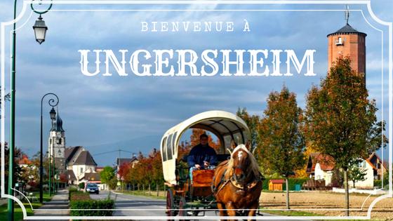 Ungersheim_calèche_France